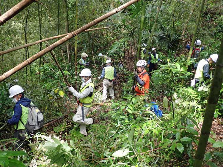 鎌倉緑のレンジャーの緑地保全活動